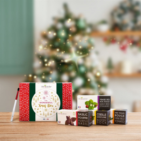 Christmas Box - Véritable®