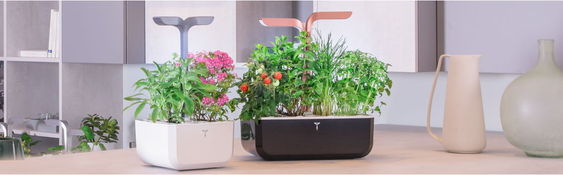 Indoor Gardens Veritable | All our models
